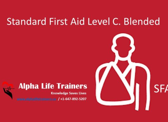 Standard First Aid & CPR Level C Blended Learning Course